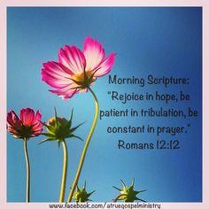 Morning Scripture: Rejoice in hope, be patient in tribulation, be constant in prayer.. #morningscripture #scripturequote #biblequote #instabible #instaquote #quote #seekgod #godsword #godislove #gospel #jesus #jesussaves #teamjesus #LHBK #youthministry #preach #testify #pray #rejoice #patience #prayer #faith #love