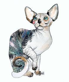 Sara Ligari #Cats