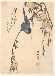 Weeping Cherry by Utagawa Hiroshige (1797–1858). Period: Edo period (1615–1868) Culture: Japan Medium: Polychrome woodblock print; ink and color on paper