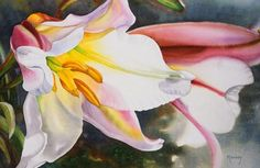 marney ward  - Watercolour Flower Paintings by Marney Ward  <3 <3