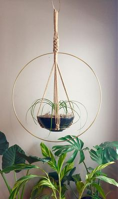 ATEN Hoop Macramé Plant Hanger//Brass Ring Jute OR White, Black Cotton Cord Hanging Macramé Plants Ferns Large Huge Big Jungalow