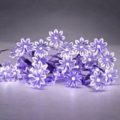 Purple set of 20 battery #operated led #flower #fairy string lights ,  View more on the LINK: 	http://www.zeppy.io/product/gb/2/131826788486/