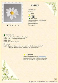 The Book of Crochet Flowers 1_38 (494x700, 216Kb)