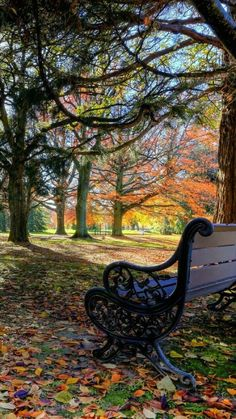 Bank / Gartenbank / Parkbank - Bench in the Park / Garden Bench - Herbst / Autumn / Fall Beautiful World, Beautiful Places, Beautiful Pictures, Autumn Scenes, Photos Voyages, Belle Photo, Beautiful Landscapes, Nature Photography, Scenery