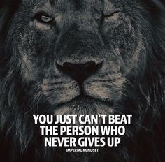 You just cant beat the person who never gives up.