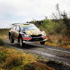 """1,188 Likes, 2 Comments - ŠKODA Motorsport (@skodamotorsport) on Instagram: """"🏆#WinningEveryWeekend: Martin McCormack jumped right on top of the podium at 2017 Donegal Forestry…"""""""