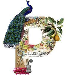 alphabet letter monogram #alphabet #letter #monogram