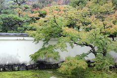 Oravankesäpesä: Japani 2013, Inuyama, Uraku-en.