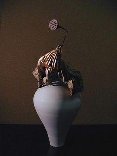 眠りの画像:一花一葉 by アツシ