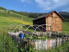 Skiing or gardening time? (Livigno, Italy)