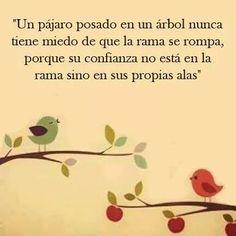 ༺✿Un pájaro posado en un árbol, nunca tiene miedo de que la rama se rompa.ღ __✿Porque su confianza no esta en la rama sino en sus propias alas༻