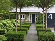 Modern Country Style: Hydrangeas, Topiary And Boxwood In The Modern Country Garden Click through for details.