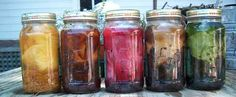 Dyeing with Natural Dyes - Kimberly Baxter Packwood Great resource!