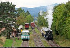 401 DVZO Steam at Hemishofen, Switzerland by Richard Behrbohm Swiss Railways, Kirchen, Switzerland, Trains, Euro, Conservation, Augsburg, Train