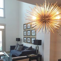 Christy allen designs photo credit michele lee willson gold urchin a beautiful urchin chandelier lighting fixture in a well appointed space in raleigh nc aloadofball Choice Image
