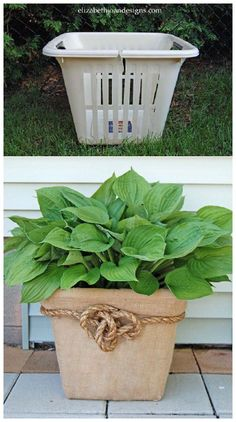 Basket Planter Garden Idea Trash to treasure project. Old laundry basket turned planter. Diy garden decor craft idea on a budget.Garden Idea Trash to treasure project. Old laundry basket turned planter. Diy garden decor craft idea on a budget.