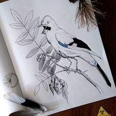 Steam punk bird tattoo idea.   Monika Paskud (@paskudtattoo) • Instagram photos and videos    #paskudtattoo #tattoodesign #postapotattoo #horrortattoo #birdtattoo