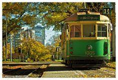 Melbourne Australia : W Class Tram by Karl von Moller, via Flickr (Autumn)