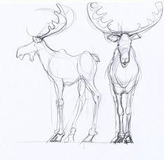 Moose! (http://4.bp.blogspot.com/_5FZo6-775NU/TRqAoeByJyI/AAAAAAAAB40/T89-1j0amjw/s1600/Day4_Moose_front%2Band%2Bside%2BStudy.jpg)
