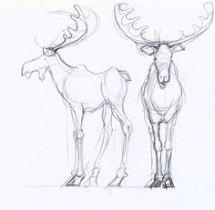 | Find more at https://www.facebook.com/CharacterDesignReferences if you're looking for: #art #character #design #model #sheet #illustration #best #concept #animation #drawing #archive #library #reference #anatomy #traditional #draw #development #artist #how #to #tutorial #mooses