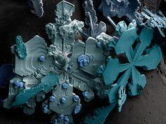 Snowflakes viewed through an electron microscope