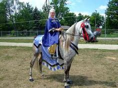 medieval horse costume - Google Search
