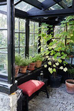 Outdoor Greenhouse, Outdoor Gardens, Outside Room, Garden Deco, Outdoor Rooms, Garden Inspiration, Beautiful Gardens, Garden Design, Home And Garden