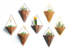 You can make a geometric gem planter for your indoor home garden with this DIY project.