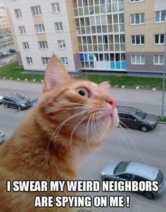 I better keep an eye on them!