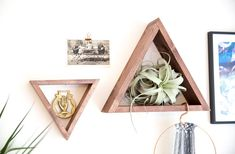 Triangle Floating Shelf / Display Shelf Walnut Stain