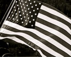 salute the ol' red, white, and blue
