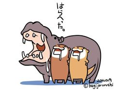 Graphic Design Illustration, Digital Illustration, Animal Drawings, Cute Drawings, Otter Cartoon, Otter Love, Japanese Artists, Manga Drawing, Funny Art