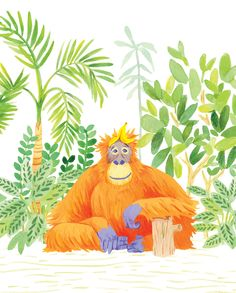 Orangutan illustration by Michelle Evans at Roxwell Press