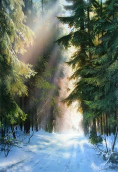 Image may contain: people standing, outdoor and nature – Beste Winterbilder Watercolor Landscape, Landscape Art, Landscape Paintings, Winter Photography, Landscape Photography, Nature Photography, Winter Painting, Winter Art, Nature Pictures