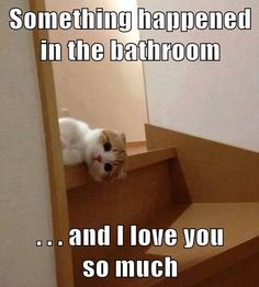 Aw!  (...don't forget that when you go in there Mom! :p )
