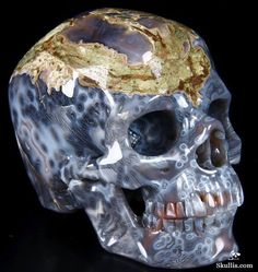 Mozambique Agate Crystal Skull