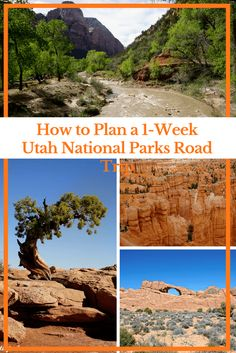 How to Plan a 1-Week Utah National Parks Road Trip | Travel USA National Parks