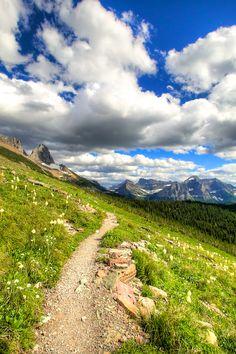 The Highline Trail in Glacier National Park | GI 365