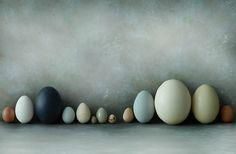 horizontale compositie