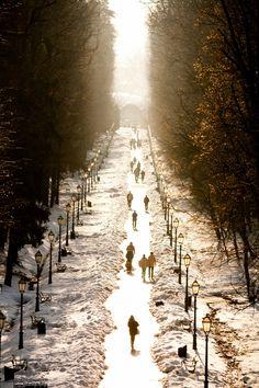 Zagreb, Croatia (by Danijel Gvozden) -   http://25.media.tumblr.com/5fc7e6aa2c4736c0cf8f45ffa3848765/tumblr_mhumln6uIs1qb0bzxo1_500.jpg