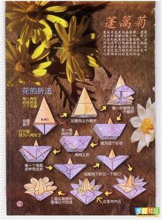 v Gato Origami, Origami Instructions, Quilling, Nerdy, Hana, Flowers, Poster, Crafts, Videos