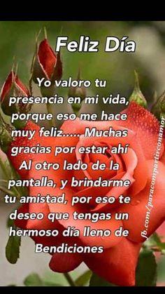 Imagen De Rosas Para Dar Los Buenos Dias Imagenes De Flores Con