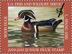 2009 Wood Duck