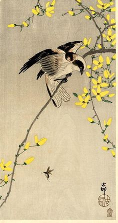 Artist: Shoson Ohara    Title: Bird and Insect    Date: 1910        Source: Japanese Art Open Database