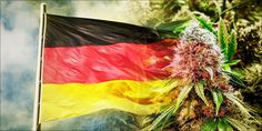 First German MS Patient Allowed To Grow Medical Cannabis - http://houseofcobraa.com/2016/10/24/46966/