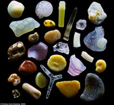 When Dr. Gary Greenberg turned his microscope on beach sand, gemlike minerals, colorful coral fragments, and delicate microscopic shells eme...