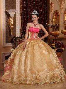 Cheap Gold Ball Gown Strapless Floor-length Prom Evening Dress in Organza