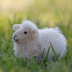 sheep needle felting