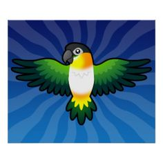 TecknadCaique/Lovebird/Pionus/papegoja Poster