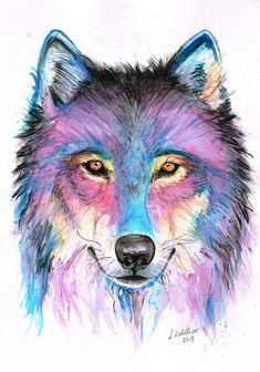 41 ideas tattoo wolf watercolor drawings for 2019 Watercolor Wolf, Watercolor Drawing, Watercolor Tattoos, Wolf Tattoo Design, Anime Wolf, Wolf Tattoos, Fish Tattoos, Cute Animal Drawings, Art Drawings